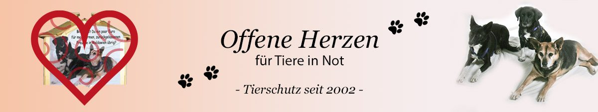 cropped-bannerreutherfinal.jpg